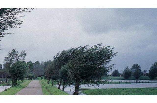 Codul galben de ploi si vijelii, PRELUNGIT pentru 31 de judete