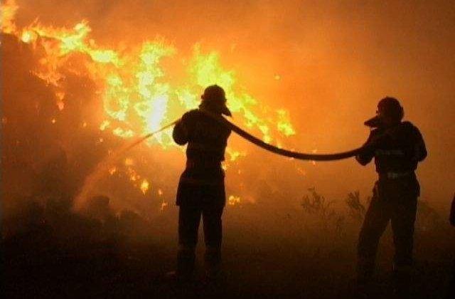 Stare de URGENTA in California din cauza incendiilor devastatoare