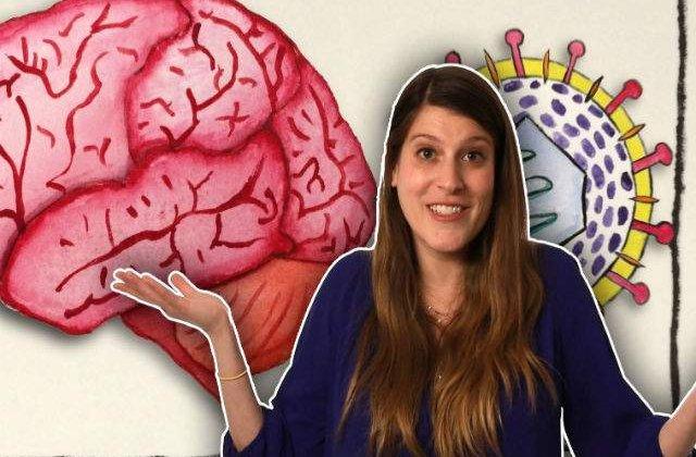 [VIDEO] Ce se intampla in creierul tau atunci cand suferi de herpes