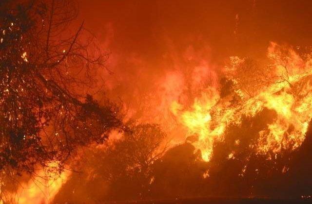 Incendiu puternic, izbucnit intr-o zona impadurita din Slanic Moldova