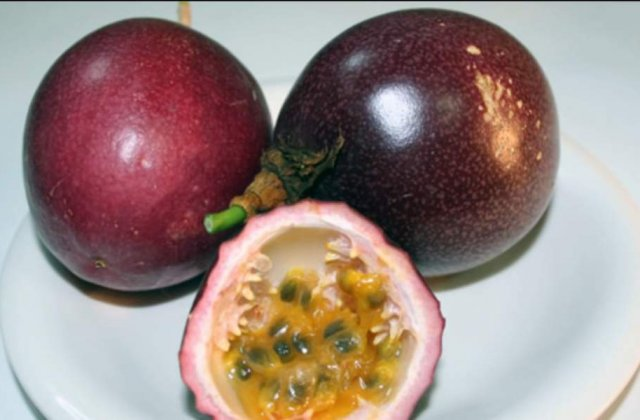 Le-ai manca? Care sunt cele mai ciudate fructe din lume
