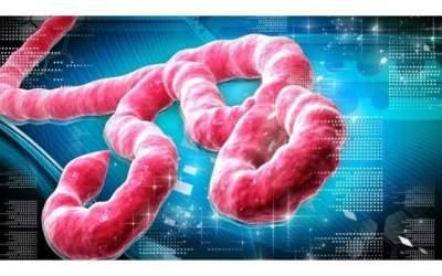 Incetarea epidemiei de Ebola...