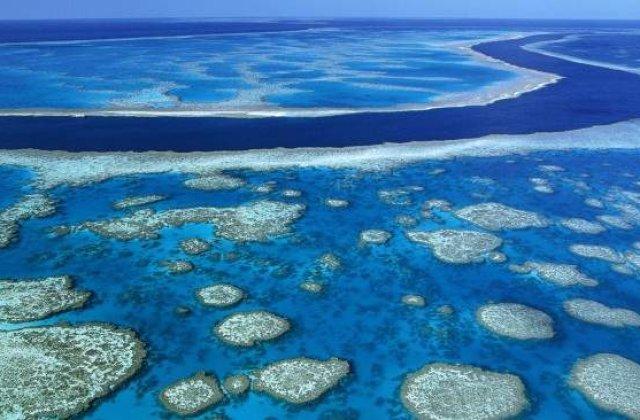 Marea Bariera de Corali din Australia, in pericol de disparitie