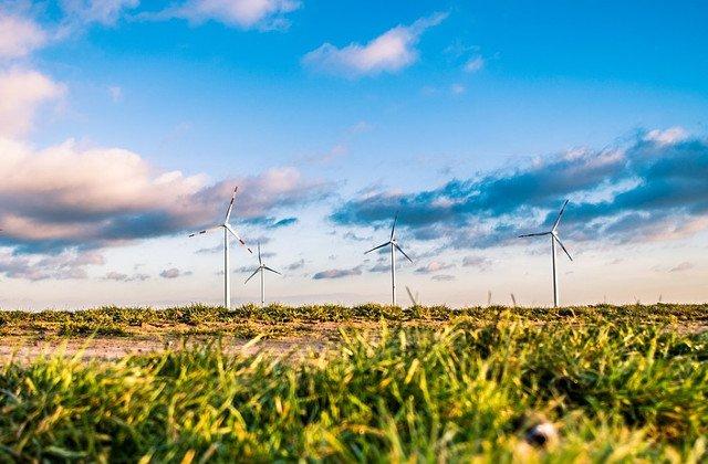 Model pentru Romania: Energia eoliana, solutia inteligenta folosita de tarile din Vest
