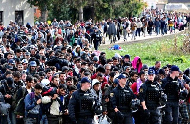 Migranti in greva foamei la granita Serbiei cu Ungaria. Cer sa fie lasati sa intre in UE