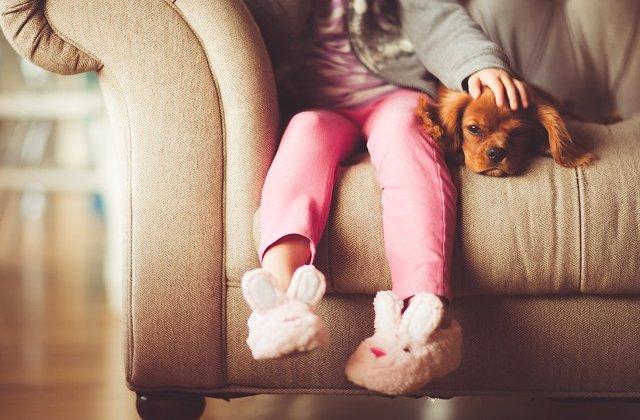 Care sunt cele mai potrivite animale de companie pentru copii?