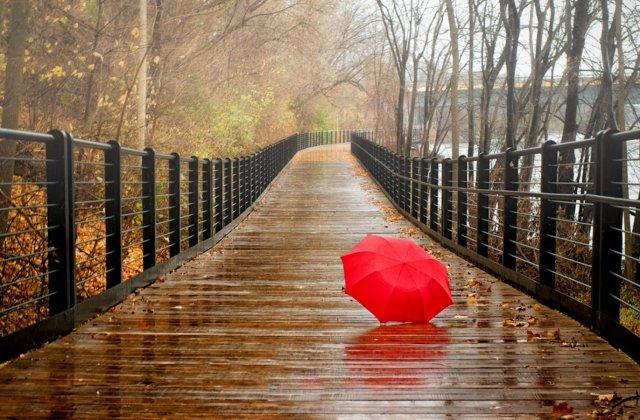 10 idei pentru zile ploioase
