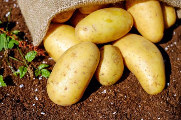 Cum se spune în Moldova la cartofi?